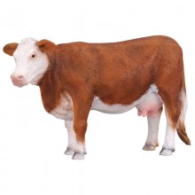 Animaux Vache Hereford